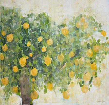 Lemon Tree by Melissa Lyons art print