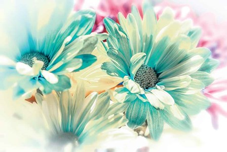 Color Full by Dina Marie art print