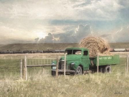 Hay for Sale by Lori Deiter art print
