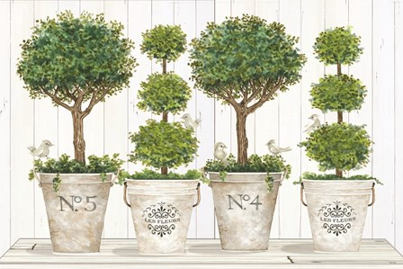 Topiary Still Life by Cindy Jacobs art print