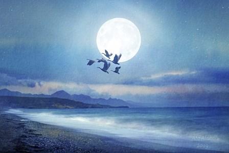 Birds Flying 2 by Ata Alishahi art print