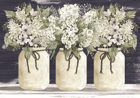 White Floral Trio by Cindy Jacobs art print
