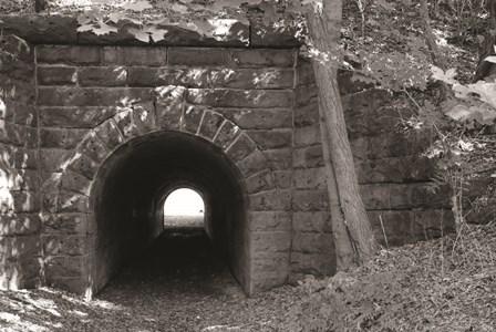 Juniata Tunnel by Lori Deiter art print