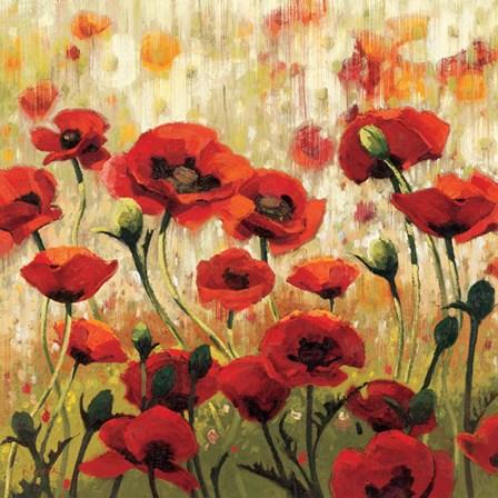 Sunny Spring Glee by Shirley Novak art print