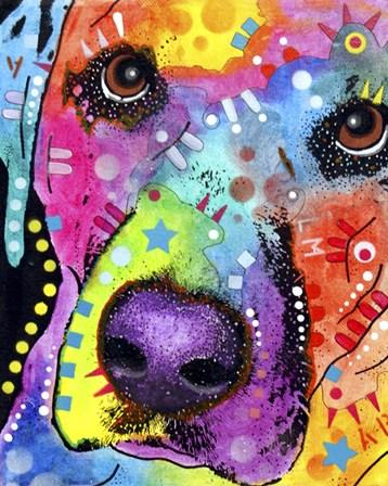 Closeup Labrador by Dean Russo art print