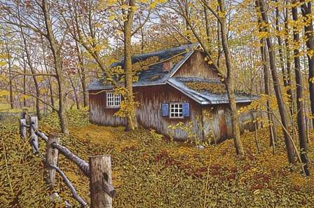 Cabin In The Woods by Thelma Winter art print