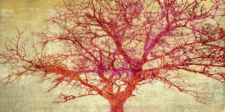 Coral Tree by Alessio Aprile art print